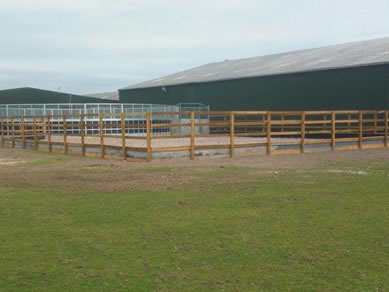 Turnout Pen
